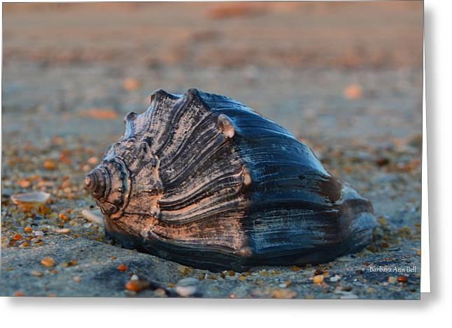 Ocean Treasures Greeting Card
