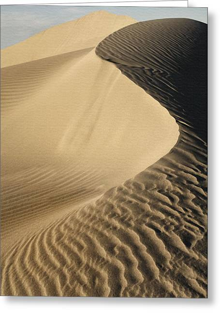 Oceano Dunes II Greeting Card by Sharon Foster