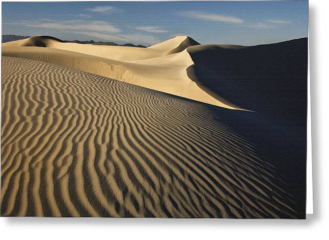 Oceano Dunes Greeting Card by Sharon Foster