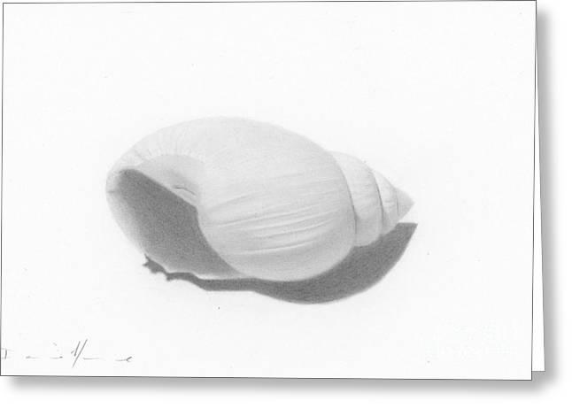 Ocean's Treasure Greeting Card