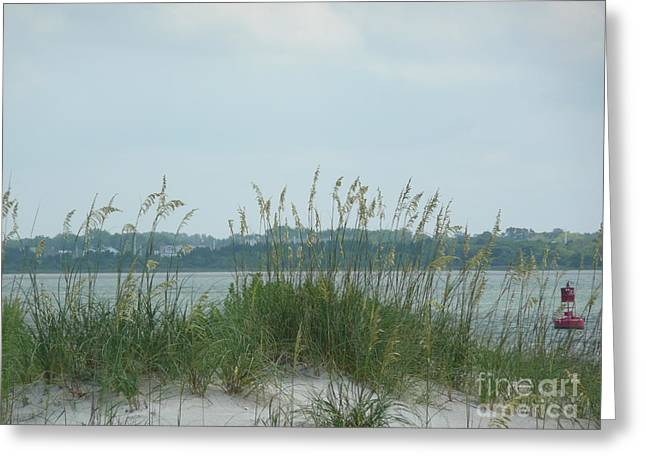 Oceanview Through Seaoats Greeting Card by Barb Montanye Meseroll