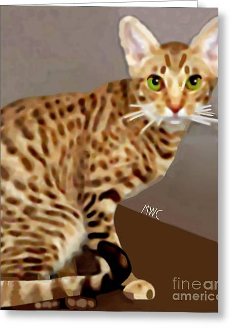 Ocicat Greeting Card