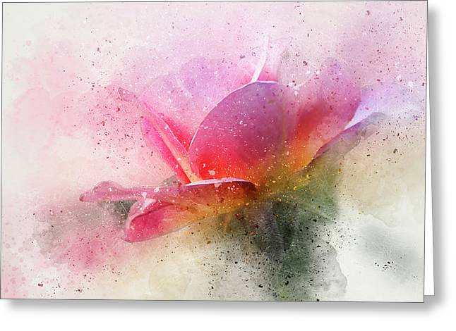 O'connor Rose Abstract Greeting Card by Terry Davis