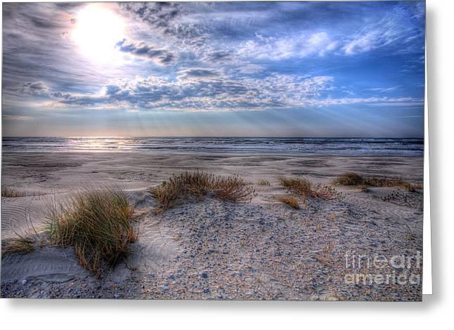 Beach Decor Framed Prints Greeting Cards - Ocracoke Winter Dunes II Greeting Card by Dan Carmichael