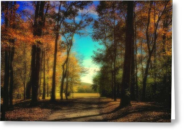 October At The Nature Preserve Greeting Card