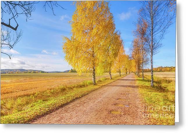 October Countryside 2 Greeting Card