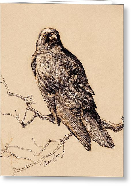 October Crow Greeting Card by Tracie Thompson