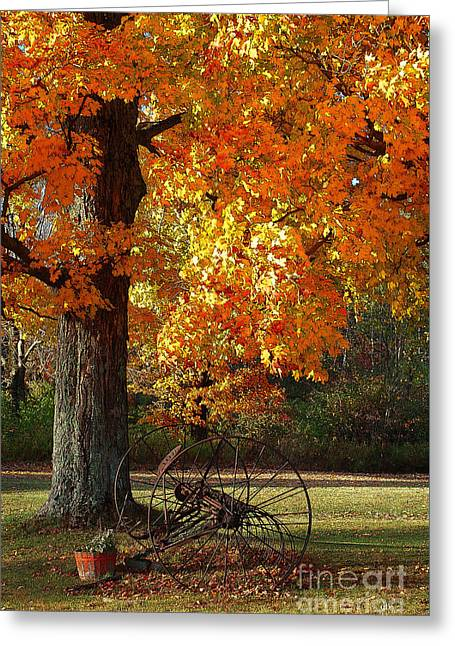 October Day Greeting Card by Diane E Berry