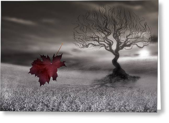 October Fades Greeting Card by Gray  Artus