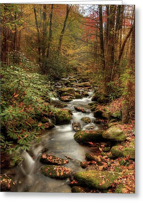 October Flowing Through The Smokies Greeting Card by Mike Eingle
