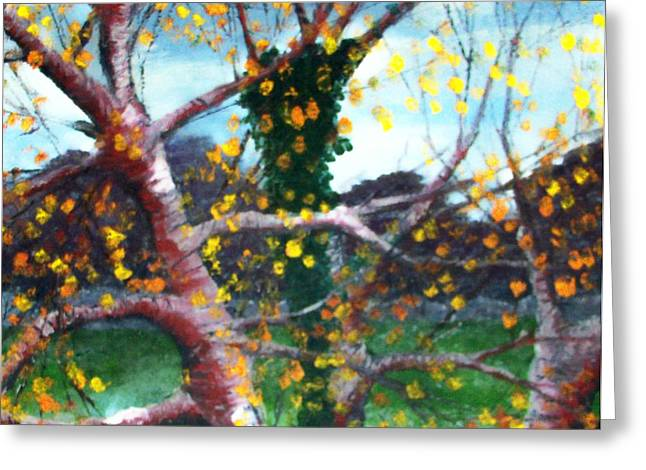 October In Leitrim Greeting Card by Jean Davies