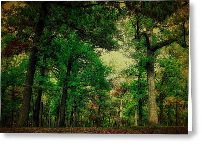 October In The Forest Textured Greeting Card by Thomas Woolworth
