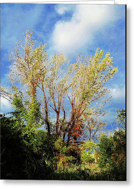 October Sunny Afternoon Greeting Card