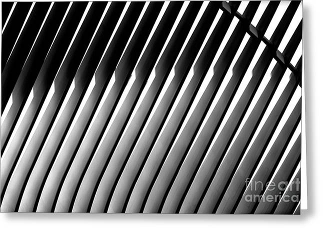 Greeting Card featuring the photograph Oculus Patterns by John Rizzuto