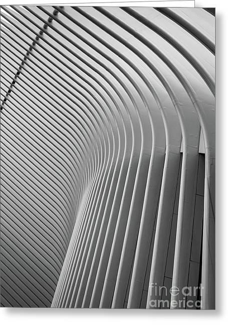 Oculus World Trade Center Greeting Card