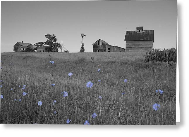 Odell Farm Iv Greeting Card