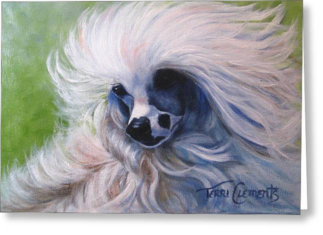Odin In The Breeze Greeting Card by Terri Clements