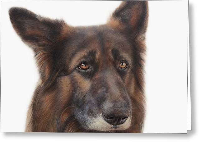 Odin The German Shepherd Greeting Card by Becky Chan