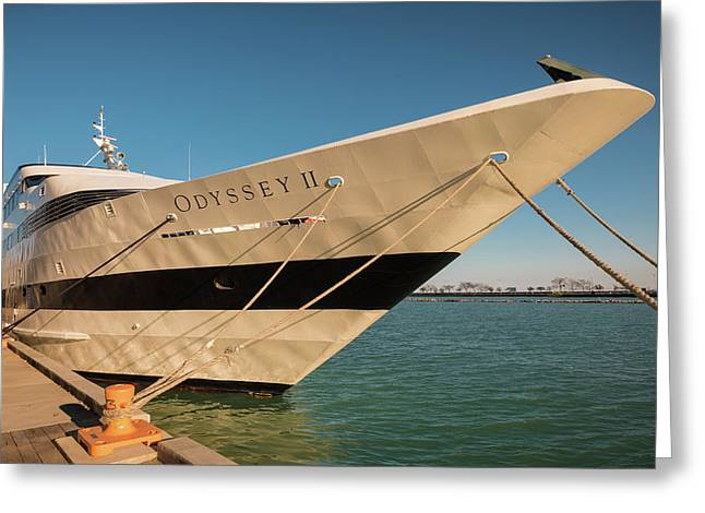 Odyssey Navy Pier Chicago Greeting Card