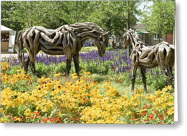 Odyssey The Horse And Hope The Colt Sculptures Made Of Driftwood Greeting Card