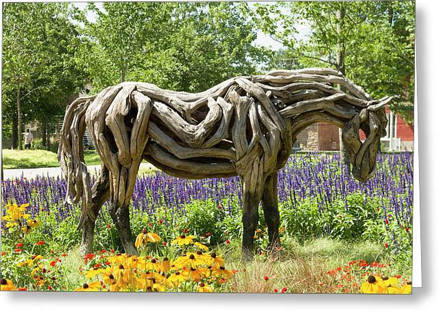 Odyssey The Horse Sculpture Made Of Driftwood By Heather Jansch. Greeting Card