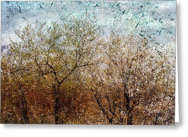 Of Birds And Trees 2 Greeting Card by Bob Orsillo