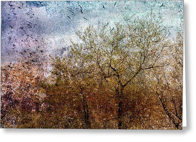 Of Birds And Trees  Greeting Card by Bob Orsillo