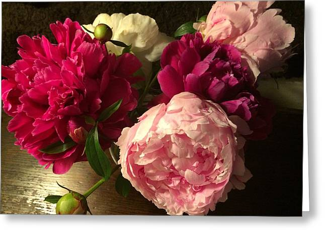 Off Center Peonies Greeting Card by Gillis Cone