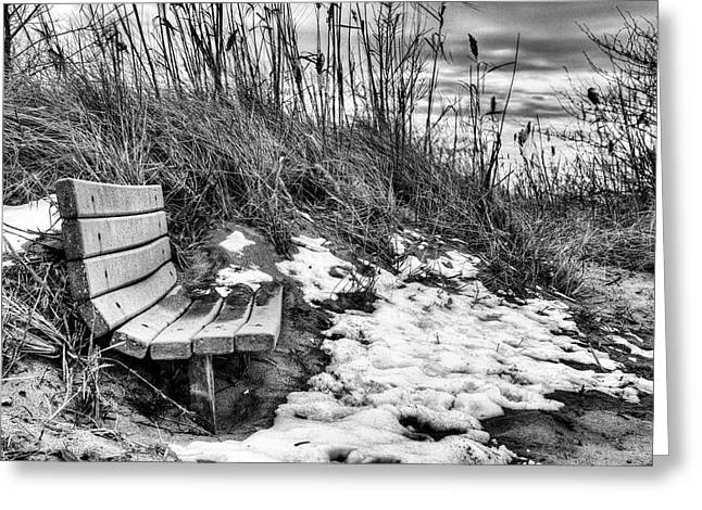 Delmarva Greeting Cards - Off Season Greeting Card by JC Findley
