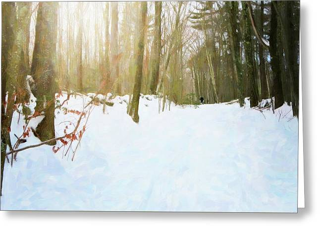 Greeting Card featuring the digital art Off The Beaten Path by Sue Collura