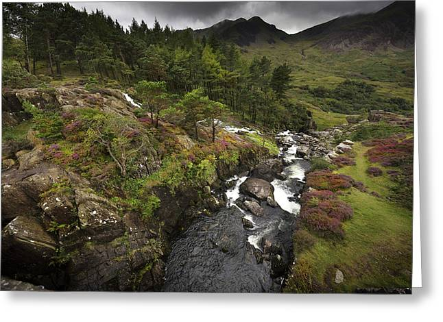 Greeting Card featuring the photograph Ogwen Falls by Richard Wiggins