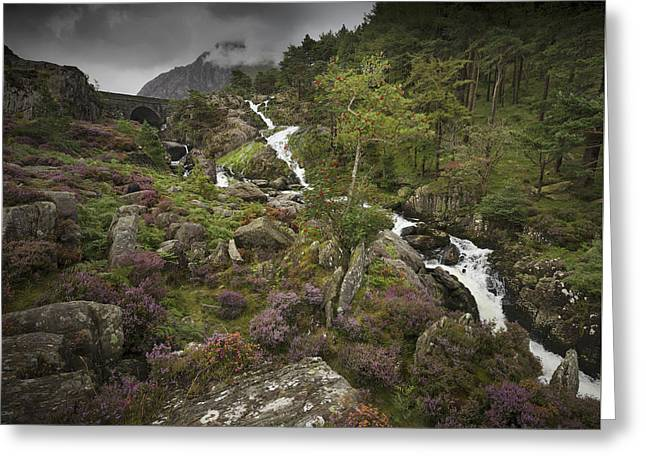 Greeting Card featuring the photograph Ogwen Valley Falls by Richard Wiggins