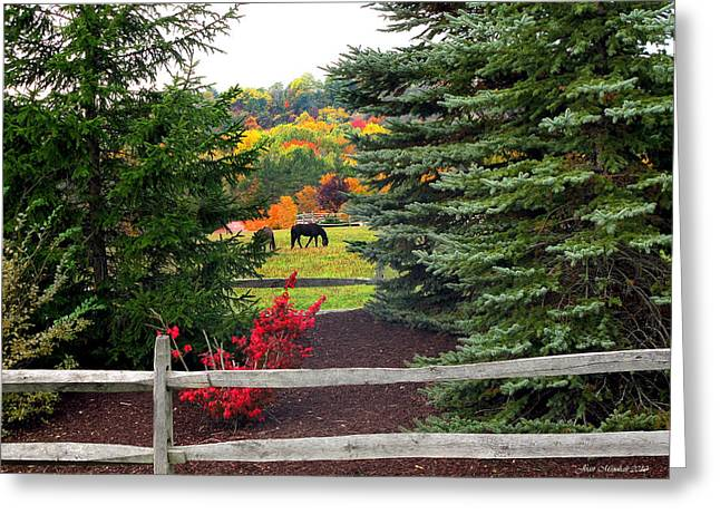 Greeting Card featuring the photograph Ohio Farm In Autumn by Joan  Minchak