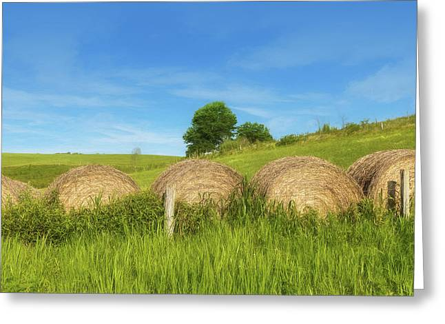 Ohio Landscape In Summer Greeting Card