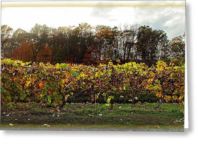Greeting Card featuring the photograph Ohio Winery In Autumn by Joan  Minchak