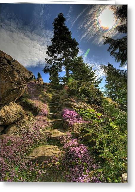 Ohme Gardens Greeting Card
