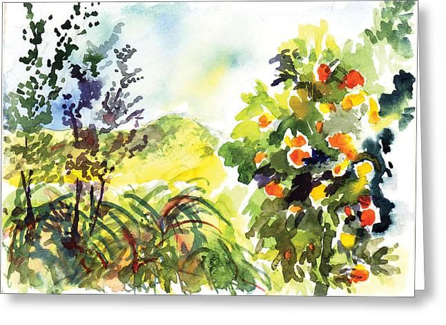 Ojai Oranges Greeting Card by Lily Hymen