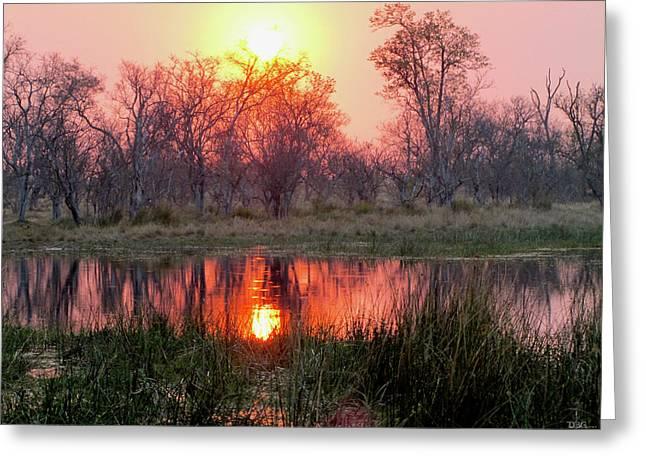 Okavango Delta Greeting Card