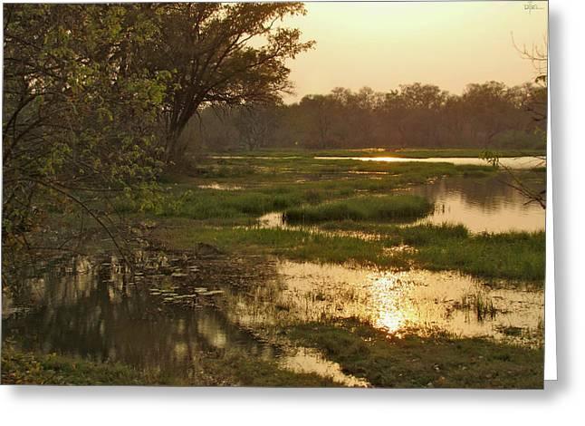 Okavango Delta Gold Greeting Card