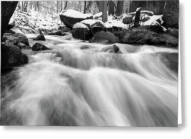 Oker, Harz In Black And White Greeting Card