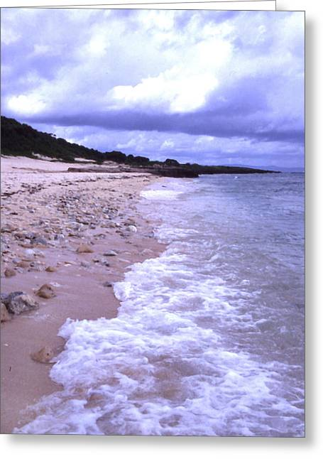 Okinawa Beach 17 Greeting Card by Curtis J Neeley Jr
