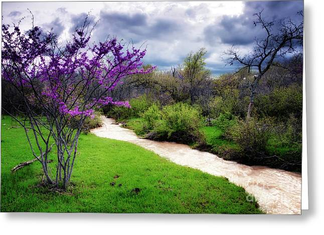 Oklahoma Spring Storm Greeting Card
