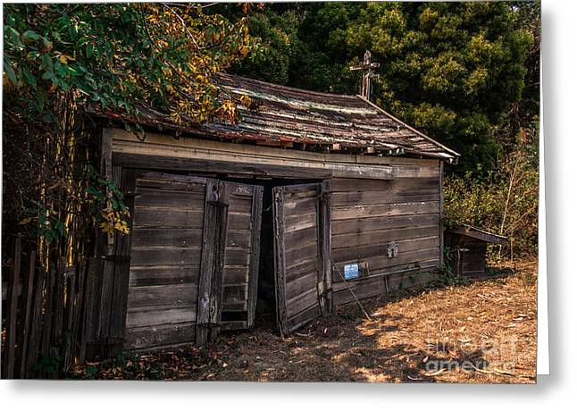 Old Abandoned Shed Sonoma County Greeting Card
