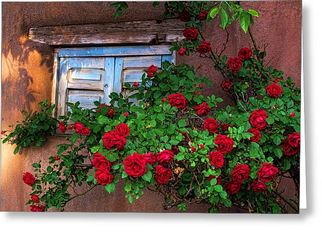 Old Adobe With Roses Greeting Card by Paul Cutright