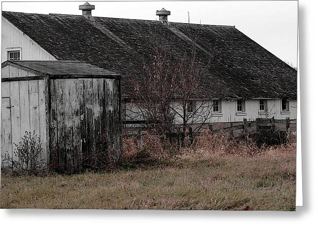 Old Barn And Outbuilding Greeting Card by David Bearden