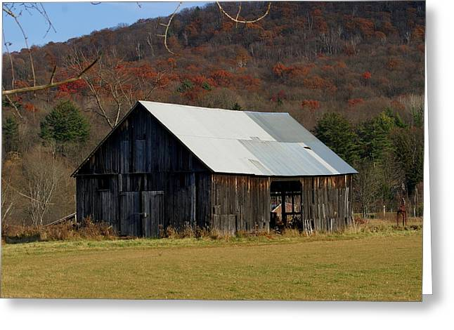 Old Barn In Fall Greeting Card by Lois Lepisto