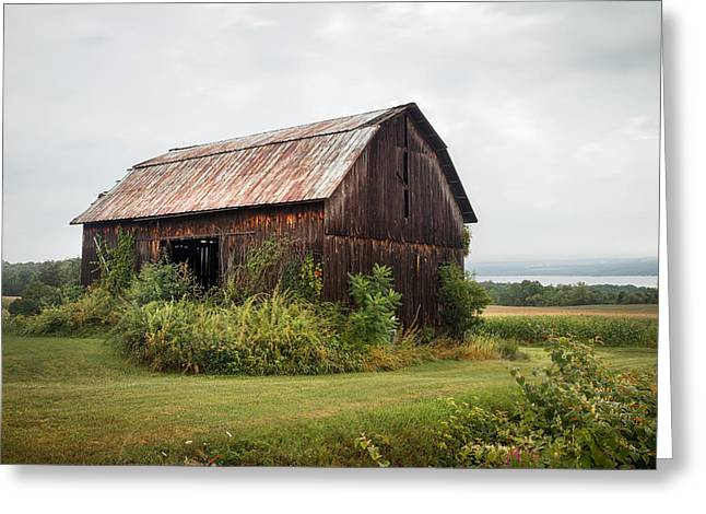 Old Barn On Seneca Lake - Finger Lakes - New York State Greeting Card