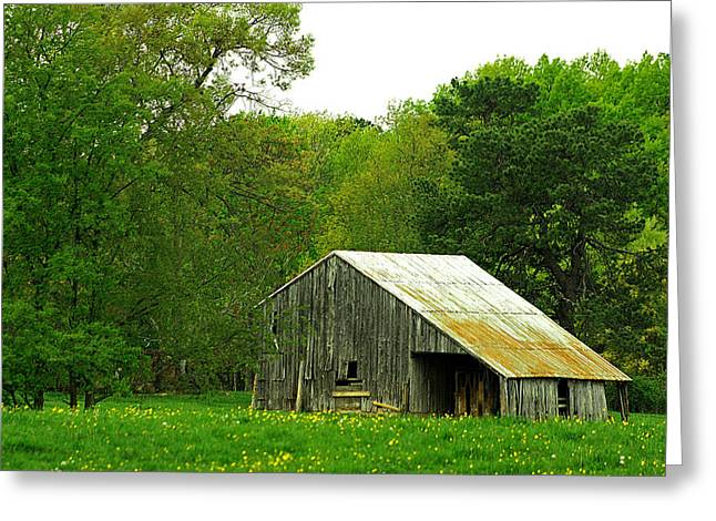 Old Barn V Greeting Card