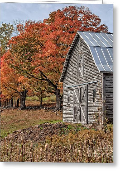 Old Barn With New England Foliage Greeting Card by Edward Fielding
