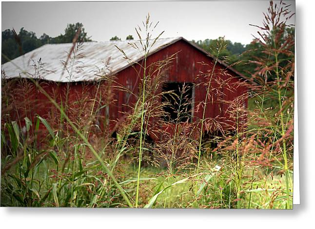 Old Barn Xii Greeting Card